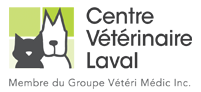 One of our client: Centre Vétérinaire Laval